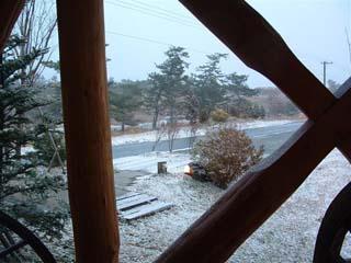 やっぱり雪でした(^^)